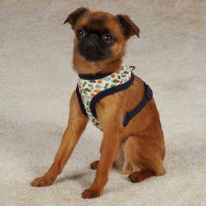 Harness Dino Dog ZA3903  2