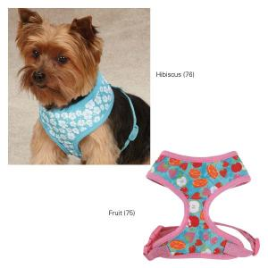 Harness Fruity Frency Hibisus  ZA5170  6