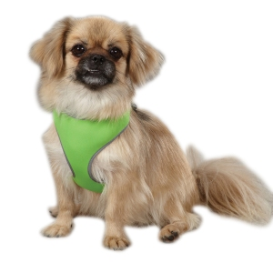Harness Green Reflector ZA1150